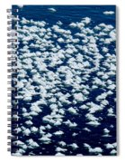 Frost Flakes On Ice - 28 Spiral Notebook