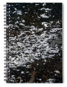 Frost Flakes On Ice - 30 Spiral Notebook