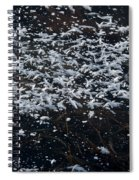 Frost Flakes On Ice - 33 Spiral Notebook