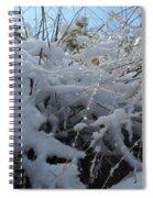 Frost Grass Spiral Notebook