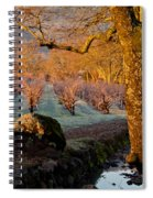 Frost In The Valley Of The Moon Spiral Notebook