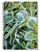 Frost On Strawberry Leaves Spiral Notebook