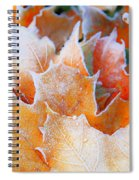 Frost Touched Spiral Notebook