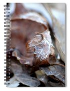 Frostcicles Spiral Notebook