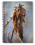 Frosted And Wilted Spiral Notebook