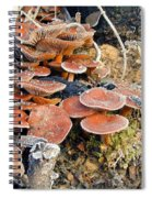 Frosted Cascading Mushrooms Spiral Notebook