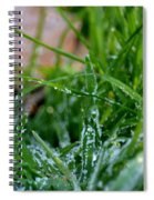 Frosted Dew Spiral Notebook