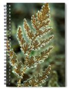 Frosted Fern Spiral Notebook