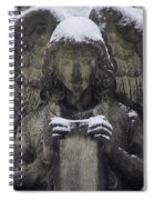 Frosted Stone Angel Spiral Notebook