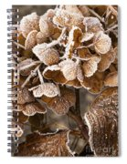 Frosted Hydrangea Spiral Notebook
