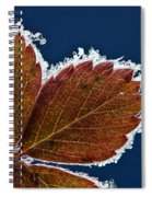 Frosted Leaf Spiral Notebook