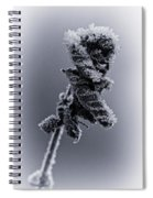Frosted Leaves Spiral Notebook