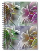 Frosted Maple Leaves In Warm Shades Spiral Notebook