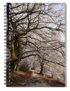 Frosted Path Spiral Notebook