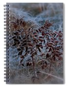 Frosted Rugosa Spiral Notebook