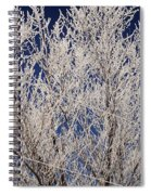 Frosted Wires Spiral Notebook