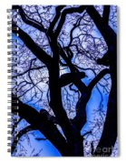 Frosty Blue Abstract Spiral Notebook