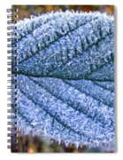 Frosty Leaf Spiral Notebook