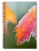 Frosty Leaf Spiral Notebook