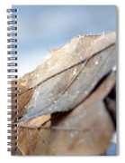 Frosty Leaves In The Morning Sunlight Spiral Notebook
