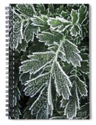 Frosty Leaves Macro Spiral Notebook