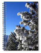 Frosty Limbs Spiral Notebook