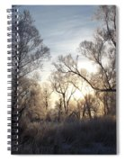 Frosty Morn 3 Spiral Notebook