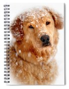 Frosty Mug Spiral Notebook