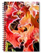 Frosty Oak Leaves Spiral Notebook