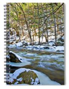Frosty River Spiral Notebook