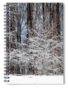 Frosty Spiral Notebook