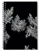 Frosty Snowflakes Spiral Notebook