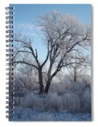 Frosty Trees 3 Spiral Notebook