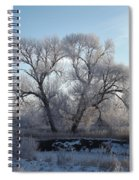 Frosty Trees 4 Spiral Notebook