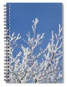 Frosty Winter Wonderland 01 Spiral Notebook