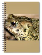 Frown Spiral Notebook