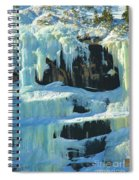 Frozen Artwork Spiral Notebook