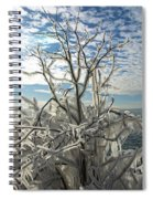 Frozen Backlight Spiral Notebook
