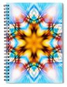 Frozen Clarity Spiral Notebook