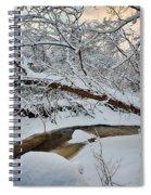 Frozen Creek Spiral Notebook