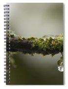 Frozen Droplet Spiral Notebook