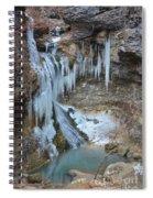 Frozen Eden Spiral Notebook
