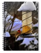 Frozen Feeder And Disappointment Spiral Notebook