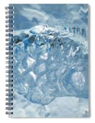 Frozen Fish Of The Northern Forests Spiral Notebook