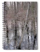Frozen Forest Floor Spiral Notebook