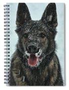 Frozen Fun Spiral Notebook
