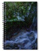 Frozen Garden Stream Spiral Notebook
