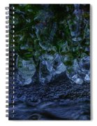 Icicle Garden  Spiral Notebook