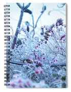 Frozen In Ice Nature Spiral Notebook