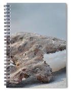 Frozen Leaf Spiral Notebook